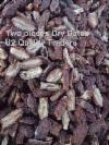 сушеные половинки фиников - Dried Dates halves